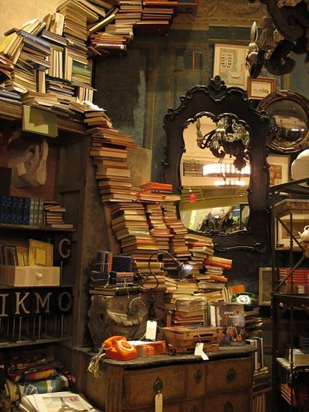 This is not actually my library but more how my husband envisions it.