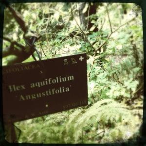 Leach Botanical gardens