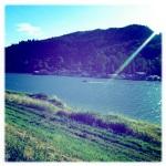 Scenes from Sauvie Island