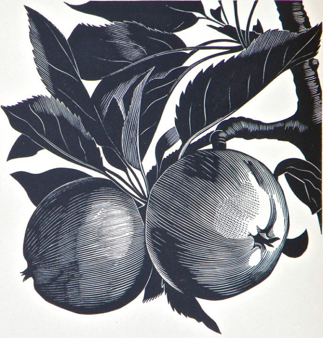 John Farleigh engraving