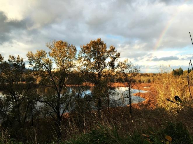 rainbowOaksBottom