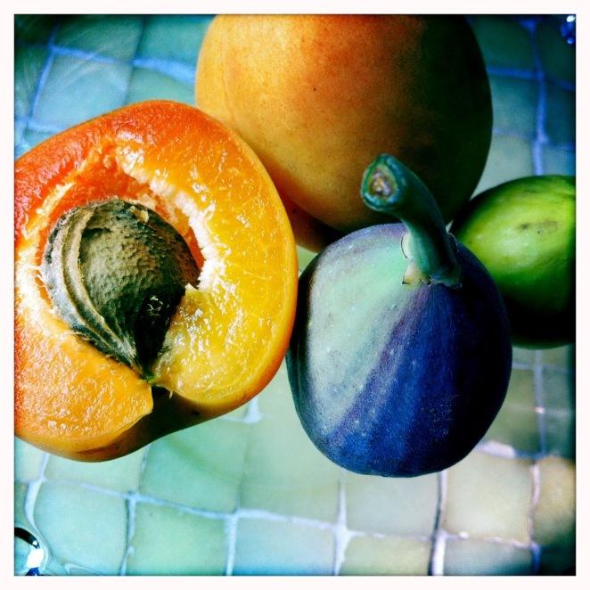 apricot2
