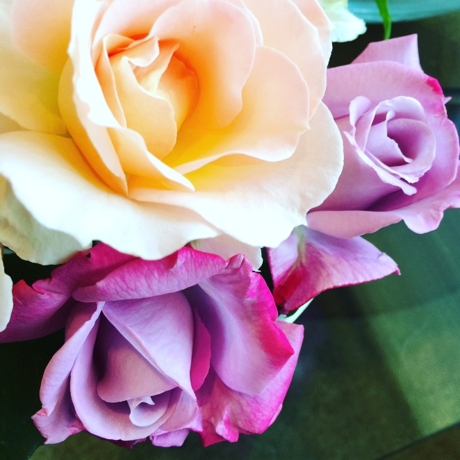 rosesMarigold
